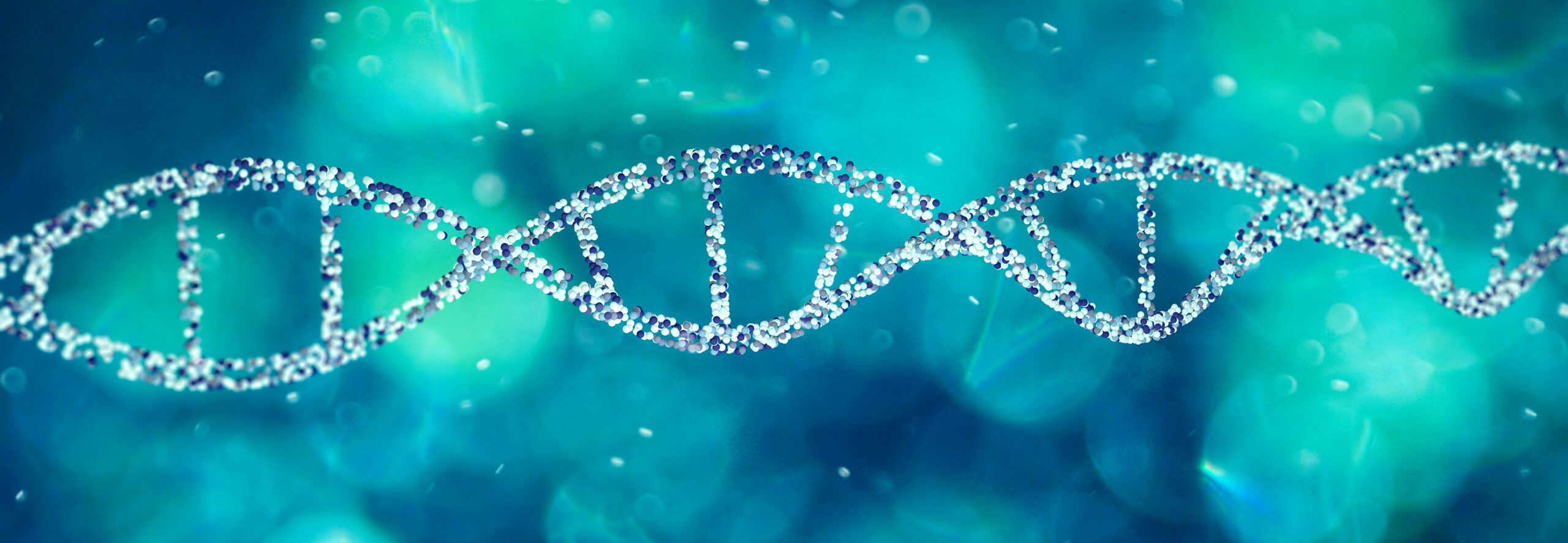 DNA helix, Deoxyribonucleic acid is a thread-like chain of nucleotides carrying the genetic instructions used in the growth, development of all known living organisms. 3d render